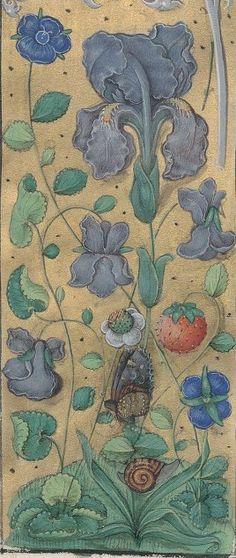 1.° L. Ann. Senecae liber de sustinendo impetum adversitatis : praemittitur vita Senecae. — 2.° Ejusdem, sive potiùs, Martini Dumiensis liber de quatuor virtutibus cardinalibus. — 3.° Liber de moribus. — 4.° ........... Date d'édition : 1401-1500 Type : manuscrit Langue : Latin Format : Parchemin Droits : domaine public Identifiant : ark:/12148/btv1b530148305