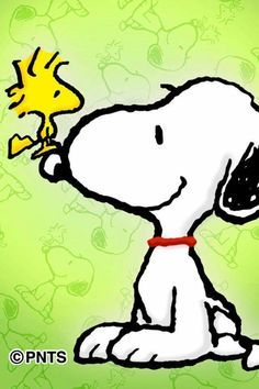 Good Morning Everyone ~ Love, Snoopy and Woodstock!!! ❤❤❤