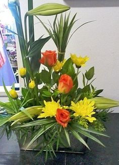 Cape Peninsula Flower & Gift Delivery for all occasions. Gift Delivery, Cape, Flowers, Plants, Gifts, Mantle, Cabo, Presents, Plant