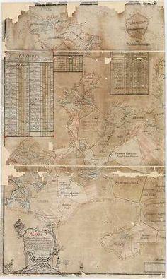 Mappa Exhibens Situationem Dominii Gyulensis in Comitatibus ... [BéML XV 1 a 48] | Térképek | Hungaricana