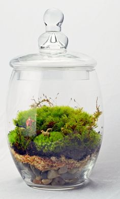 Moss Terrarium Large // Shepard // Dog // Sheep // Green Gift by PinkSerissa - Found on HeartThis.com @HeartThis