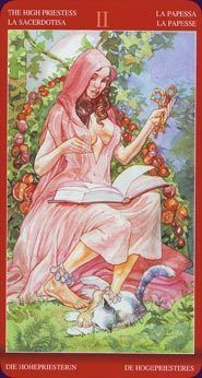 Tarot of Sexual Magic By Laura Tuan & Mauro De Luca Tarot Deck | eBay