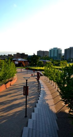 University-of-Cincinnati-22.jpg (1195×2250)