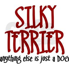 Silky Terrier JUST A DOG Mug
