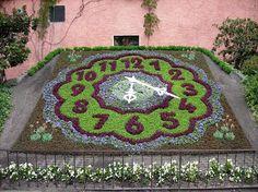 Floral clock at the Fleischerbastei (butchers' bastion) in Zittau (Görlitz district, Saxony), summer aspect