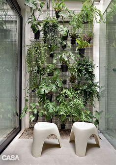 Costelas-de-adão, bromélias, samambaias e orquídeas formam o jardim vertical no banheiro, que conta com seixos para a drenagem.