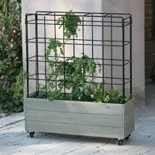 Image result for glass planter on wheels