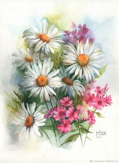 Купить Ромашки и флоксы - комбинированный, ромашки, флоксы, букет цветов, акварель, цветы акварелью, цветы