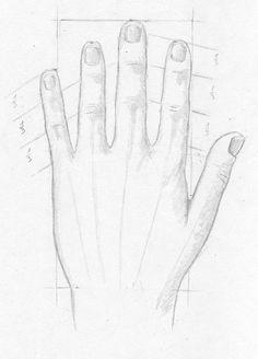 Hand, Hände und   Finger zeichnen lernen - Zeichenkurs Tutorial