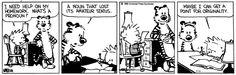 A pronoun is a noun that lost its amateur status. - Calvin & Hobbes