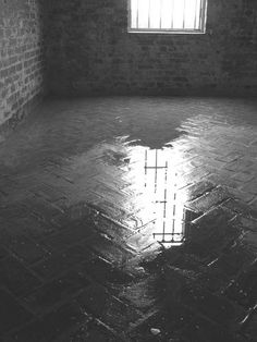 Inside puddle, at castle Atalaya, former South Carolina winter home and studio of noted American sculptor Anna Hyatt Huntington, 2004.