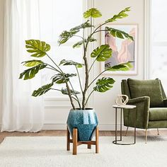 Faux Potted Monstera & Ilya Floor Planter Wood Planters, Outdoor Planters, Plant Wall, Plant Decor, Plant Games, Pottery Barn Teen, Upholstered Furniture, Wood Turning, Indoor Plants
