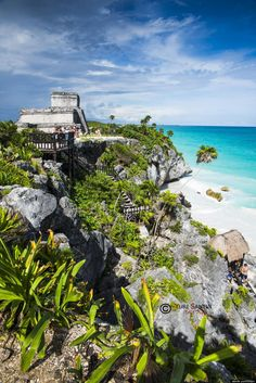 Take an amazing swim in the ocean and gaze at the Mayan ruins in Tulum, Mexico