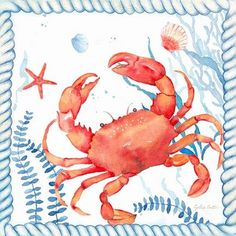 Framed Nautical Sea Life I-Crab Print Beach Art, Marine Life, Nautical, My Life, Sea, Navy Marine, Beach Artwork, Ocean, Nautical Style