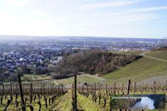 """Strecke Bonn-Oberkassel - Kloster Heisterbach 02.02.2014 - mit dem """"Rheinblick"""" bei Oberdollendorf"""