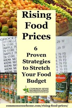Rising Food Prices - 6 Proven Strategies to Stretch Your Food Budget - Plus Factors Involved in Rising Food Costs to Help You Plan for Price Increases Living On A Budget, Frugal Living Tips, Frugal Tips, Frugal Meals, Food Cost, Food Budget, Budget Meals, Budget Recipes, Money Tips