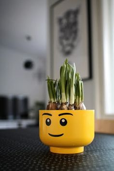 Via Aniliini | Lego Planter with Bulbs