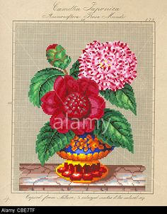 Berlin wool work pattern for Camellia Japonica and Rosa Mundi