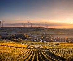 Photo By Karsten Würth   Unsplash #dayrisesolarenerdy #dayrise #rise #LI #IFTTT #YouTube #TW #TWITTER #Tumblr #Pinterest #Instagram #FB #dayrisesolarenerdy #solarenergy #solarpower #solarpanels #solarplant #ongrid #solarpanelsinstallation #solarpanelsinsonipat #dayrisesolar   9963493474 9618637662  http://dayrisesolar.com DayRise Solar Enerdy Pvt Ltd Sonipat Haryana