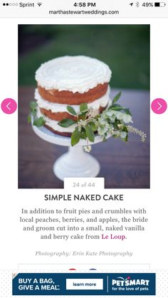 SIMPLE NAKED CAKE In addition to FRUIT PIES and CRUMBLES with local PEACHES, BERRIES, and APPLES, the bride and groom cut into a small, naked vanilla and berry cake from Le Loup.