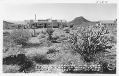 Burton Frasher, Mountain Springs Auto Camp 27 Miles West of Needles on Hwy 1939 Photographic postcard Frasher Foto Postcard Collectio. Needles California, Route 66, Camping, Outdoor, Mountain, Google Search, Campsite, Outdoors, Outdoor Games