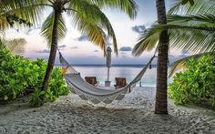 Tropical charm