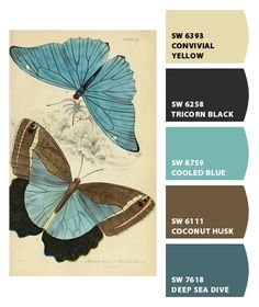 Sherwin-Williams Cooled Blue. - Google Search