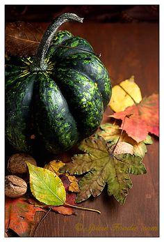 Sunday Snapshots: Autumn Fruits