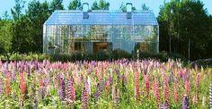 Ett naturhus kan kort beskrivas som ett timmerhus inuti ett växthus. Växthuset som är på 300 m2 omsluter hela systemet och fungerar som en yttre barriär. Växthuset bidrar genom klimatskyddet till minskad energiförbrukning och ger ett lyxigt boende med låg energiförbrukning och praktisk vardagsekologi. Växthuset skapar ett klimat som ...