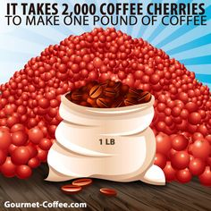 2,000 Coffee Cherries = 1 lb. Roasted Coffee  #coffeelovers #didyouknow #funfacts