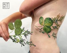strawberry leaf, thuja and alfalfa  tattoo stencil made with real plants, we…