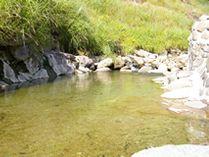 川底から湧き出る温泉をせき止めた天然川風呂  混浴 水着可 秋田県湯沢市 阿部旅館 Japan
