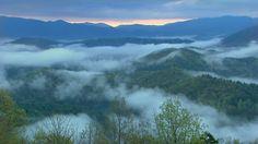 I love waking to morning fog!