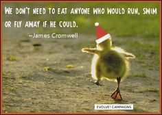 We do not need to eat anyone who would run, swim, or fly away if he could.