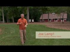 How to Renovate Your Lawn in Five Steps - YouTube