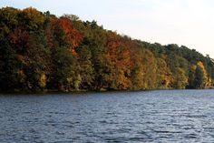 Autumnal colours - Szczecin, Zachodniopomorskie