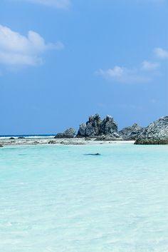 Time for a dip! - Iheya Island, Okinawa, Japan by Ippei & Janine Naoi, via Flickr
