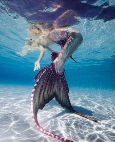 Be in love with your life. Enjoy every minute. Follow @MermaidElite to see the best of the best from the mermaid community! Always… Fantasy Mermaids, Unicorns And Mermaids, Real Mermaids, Mermaids And Mermen, Siren Mermaid, Mermaid Cove, Mermaid Art, Mermaid In Love, Mermaid Paintings