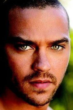 He is known for his role as Dr. Jackson Avery on the ABC series Grey's Anatomy and as Lena's boyfriend Leo in the film sequel The Sisterhood of the Traveling Pants 2. Description from pinterest.com. I searched for this on bing.com/images
