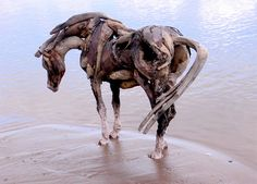 artist Heather Jansch made these incredible horse sculptures from driftwood she found on the beach. Kind of creepy but in a good way.