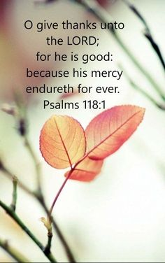 """""""O give thanks unto the LORD; for he is good: because his mercy endureth for ever. Psalms KJV Inspirational Quote from the Book of Psalms. Biblical Quotes, Bible Verses Quotes, Bible Scriptures, Spiritual Quotes, Healing Scriptures, Bible Psalms, Devotional Quotes, Bible Prayers, Healing Quotes"""
