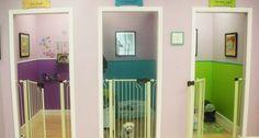 Evcil hayvan oteli açmayı hiç düşündünüz mü?