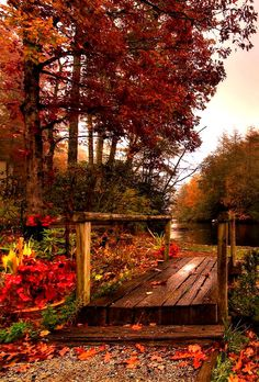 fresh autumn morning …via pinterest
