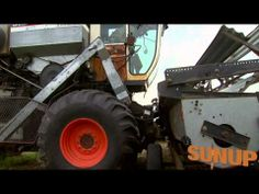 SUNUP looks inside the operation at Foundation Seed with Jeff Wright and Brett Carver