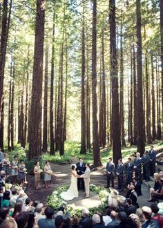 Sweet South Carolina Garden Wedding Wooden Arbor Simple