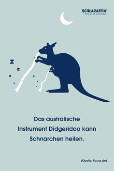 Wäre Didgeridoo spielen etwas für dich? Die Zungen- und Rachenbewegungen, die beim Didgeridoo spielen vorkommen, haben das Potential eine milde Schlafapnoe zu lindern. Das wurde in einer Studie der Universität Zürich nachgewiesen. Friday Facts, Didgeridoo, Stress, Memes, Movie Posters, Snoring, Sleep Better, Falling Asleep, Meme