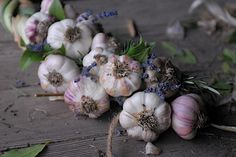 Decorative Garlic Braids with herbs for decoration