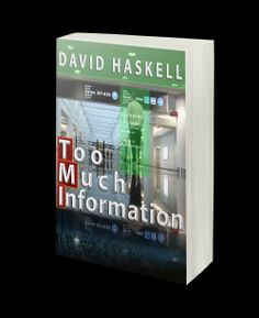 Silkki's Reviews: Too Much Information eBook Review