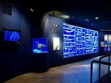 海のはくぶつかん 東海大学海洋科学博物館に関しての子どもとおでかけ基本情報ページ。海のはくぶつかん 東海大学海洋科学博物館の周辺の天気予報や駐車場、営業時間の情報が満載。海のはくぶつかん 東海大学海洋科学博物館に子連れ、ファミリーでおでかけなら子供とお出かけ情報「いこーよ」で。海のはくぶつかん 東海大学海洋科学博物館に家族、親子でお出かけする際に便利な、営業時間、料金、定休日、アクセス、住所、電話番号、園内の見どころなどがわかる海のはくぶつかん 東海大学海洋科学博物館の基本情報ページです。