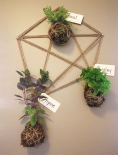 diy string gardens... I think I have everything but the plant itself in the house already!
